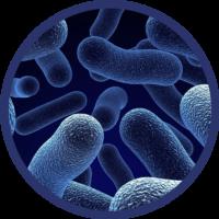 Disinfezione sanitaria